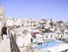 israel2006_14